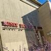 Grande Exposition Musée des Beaux Arts de Brest Brest