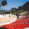 Concerts Pop Théâtre de Verdure Ramatuelle