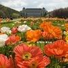 Sortez ! Jardin des Plantes Paris