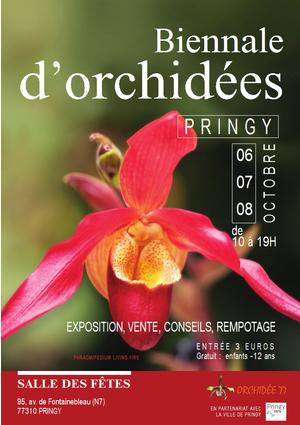 orchidee 75019