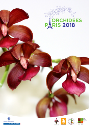 orchidee paris 19