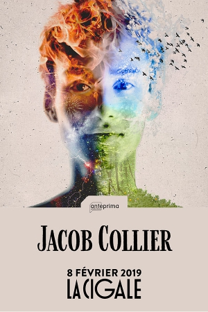 JACOB COLLIER - DJESSE