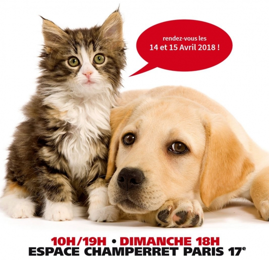 Salon chiens chats espace champerret paris 75017 for Salon du chien et chat