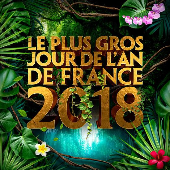 flyer le plus gros jour de l 39 an de france 2018 jungle palmiers cascades 59 10 consos. Black Bedroom Furniture Sets. Home Design Ideas