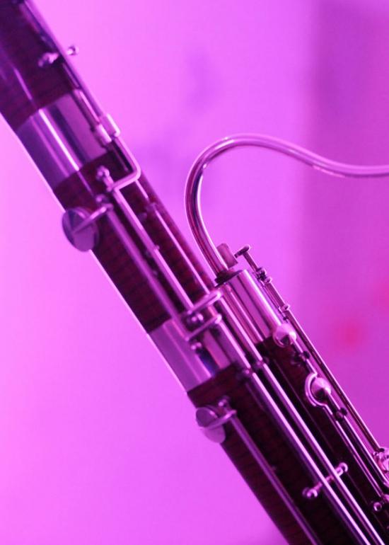 Les bois se dechainent orchestre de chambre de paris - Orchestre de chambre de paris ...