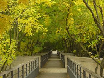Visites guid es des parcs et jardins de paris parcs et for Jardins paris 2015