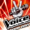 affiche THE VOICE TOUR 2015