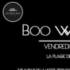 affiche Les Boucans invitent Boo Williams