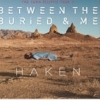 affiche BETWEEN THE BURIED AND ME