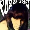 affiche THE FUZZTONES + GUEST