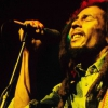affiche TRIBUTE2BOBMARLEY BY THE ROOTSRIDER