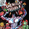 affiche SHEMALE TROUBLE : C.A.R +  Léonie Pernet and friends