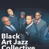 affiche Black Art Jazz Collective
