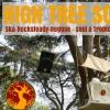 High Tree Sound System - Fête de la Musique 2017
