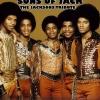 The Jacksons' Tribute : Sons of Jack + DJ ATN