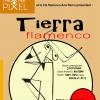 TIERRA FLAMENCO