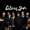 affiche CITRUS SUN (W.BLUEY OF INCOGNITO)