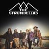 affiche THE STRUMBELLAS