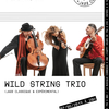 affiche Wild Strings Trio