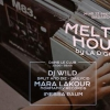 affiche Melting House w/ DJ W!LD, Mara Lakour, Haribo House & more