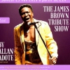 affiche The James Brown Tribute Show by Allan Adote au Jazz Café Montparnasse