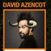 affiche DAVID AZENCOT - DANS ANIMAL