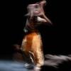 Danse | Rafael Smadja et Camélia Montassere