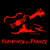FLAMENCO EN FRANCE