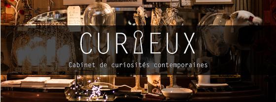 Curieux Cabinet De Curiosites Contemporaines Paris Boutique